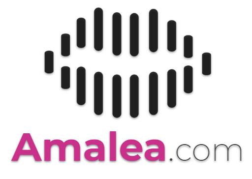 assistant vocal de proximité local voice bot – contactless services